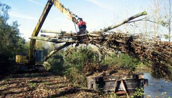 débardage de bois-énergie